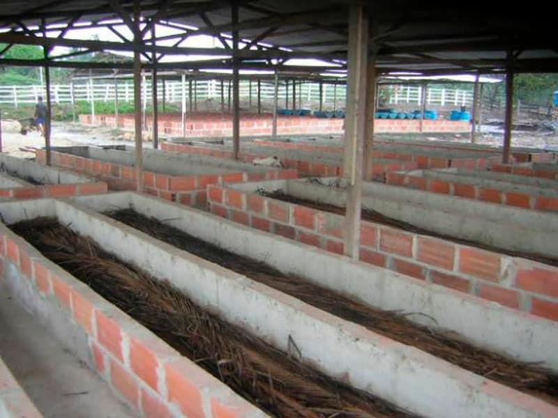 Construcción del lecho para el cultivo de lombrices