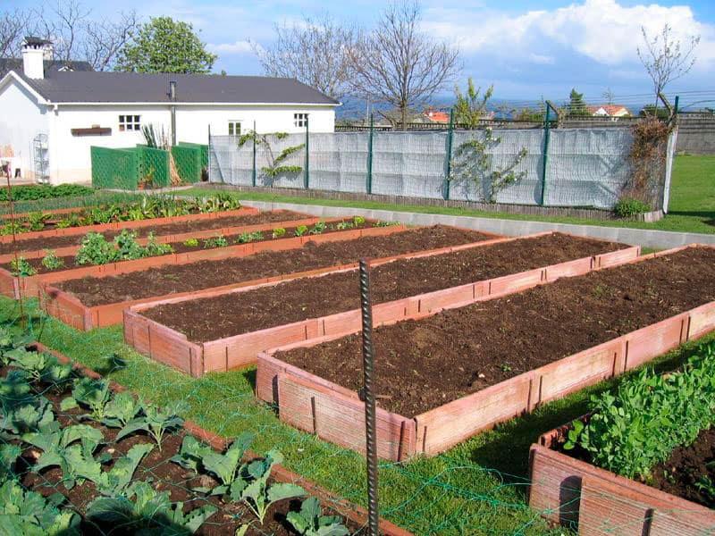 Camas de tierra ideales para cultivar hortalizas