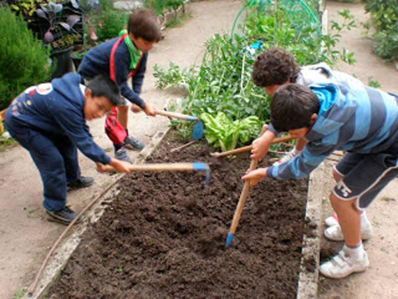 Niños preparando el lugar para sembrar