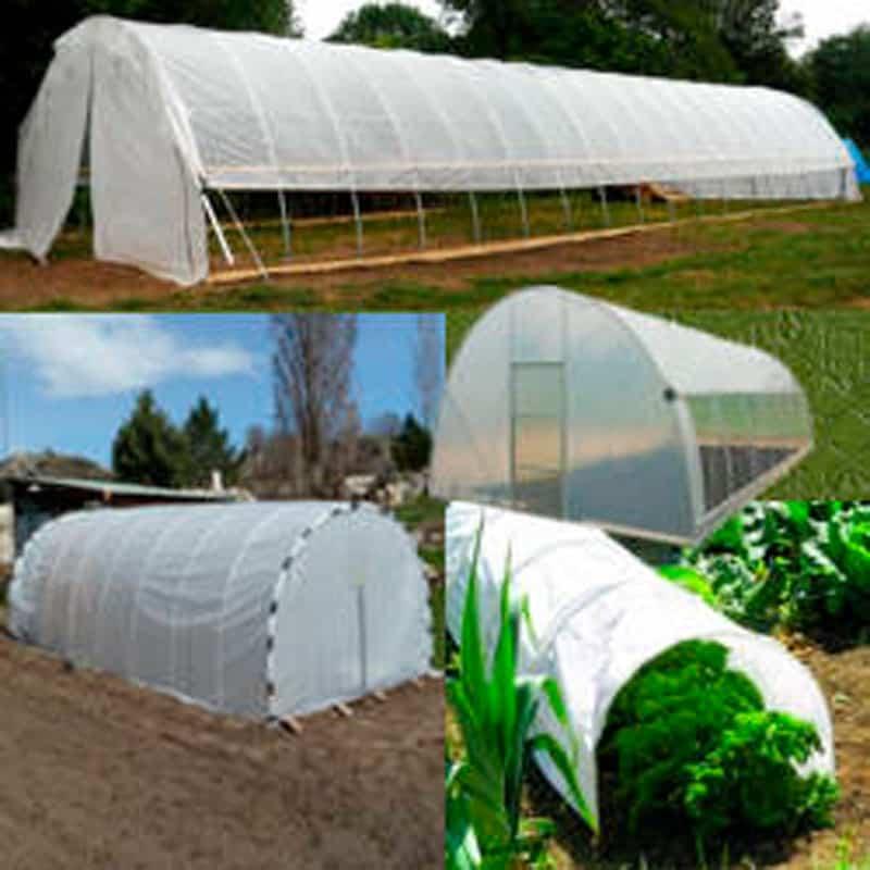 Lee más sobre el artículo Cobertizos y carpas solares