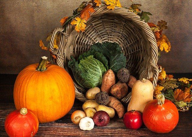 Lee más sobre el artículo Definición y uso de las hortalizas
