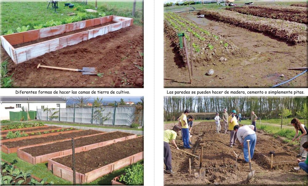 alternativas de camas de tierra para la siembra de hortalizas