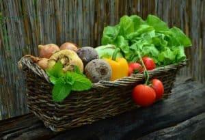 Lee más sobre el artículo Hortalizas Fáciles de Cultivar