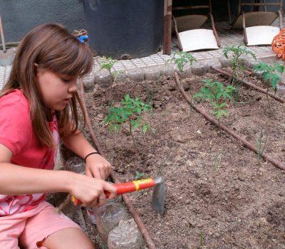 Cuidado de las hortalizas
